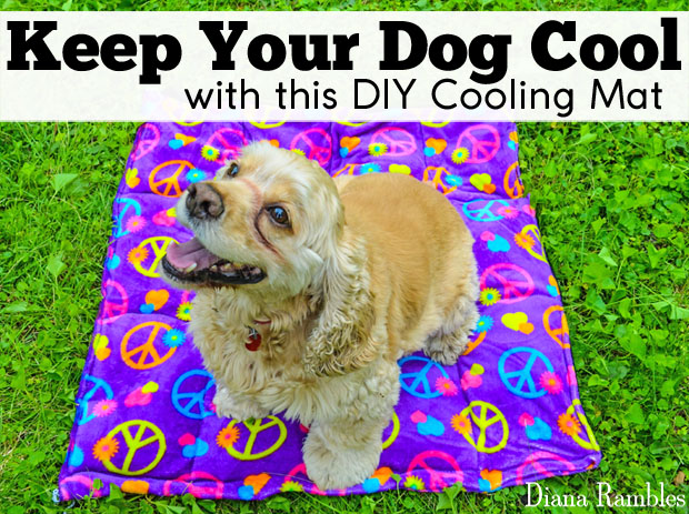 DIY dog cooling mat