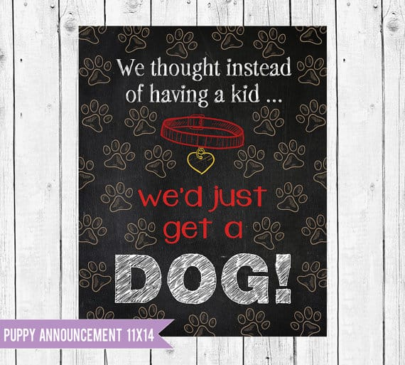 New dog announcement