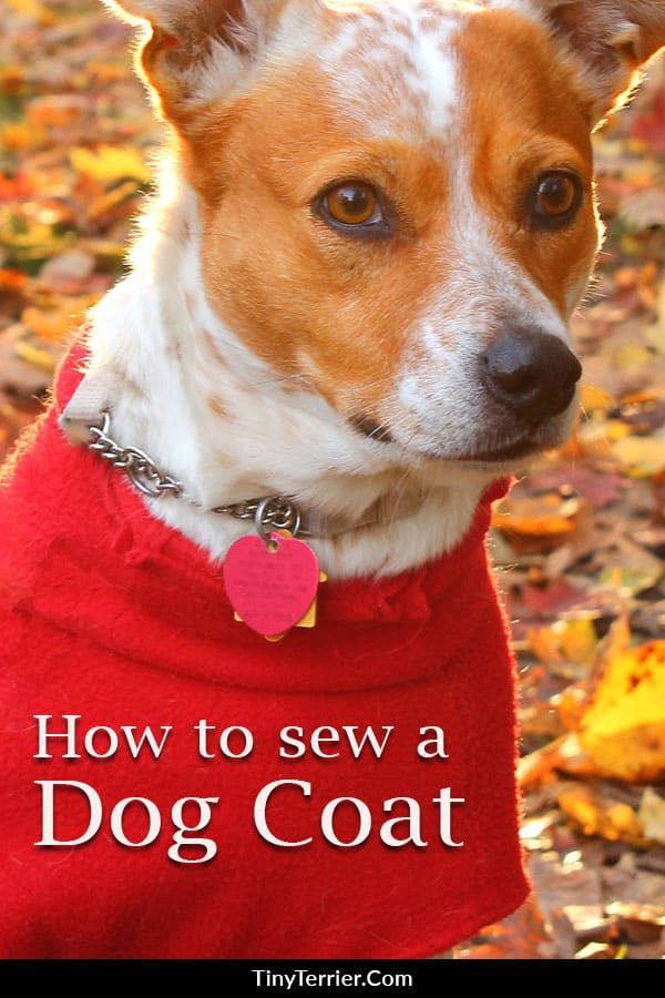 Sew your dog something special with these free sewing projects for dogs. Dog sewing patterns are a wonderful way to share your creativity with your dog. Sew your dog a bed, make them handmade dog collar or leash or create some homemade dog toys.