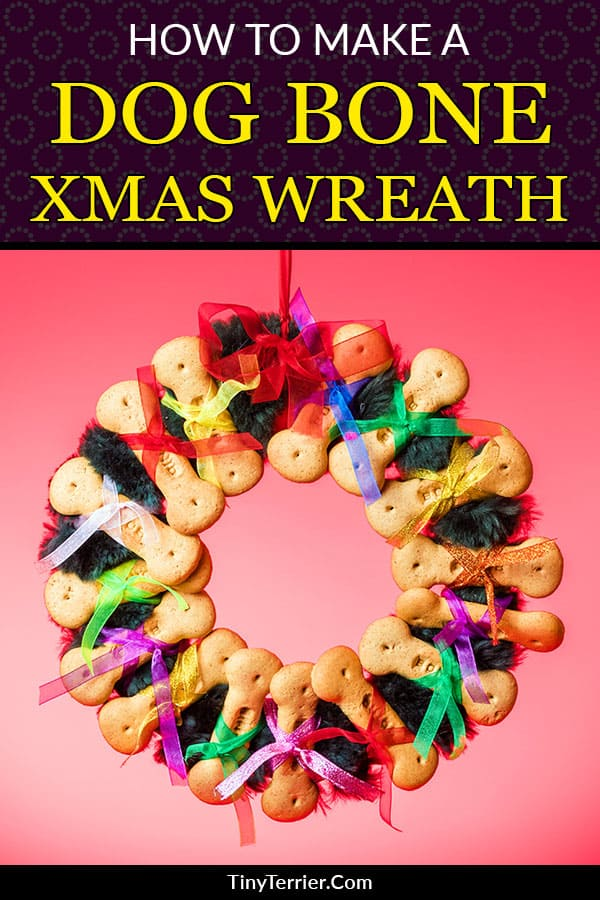 Make this easy DIY Christmas craft project for your dog. I wanted an easy-to-make dog-themed decoration to hang up in my living room this year, so I decided to make a dog biscuit wreath to go on the wall.