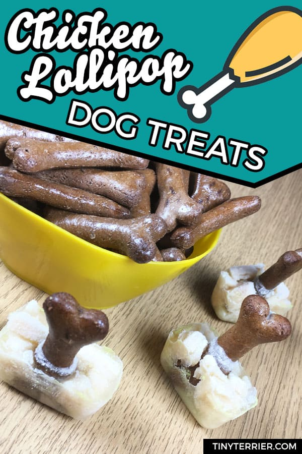 Frozen chicken lollipop dog treats. Turn chicken, gravy bones and chicken stock into tasty frozen treats for your dog. #dogfood #dogs #recipe