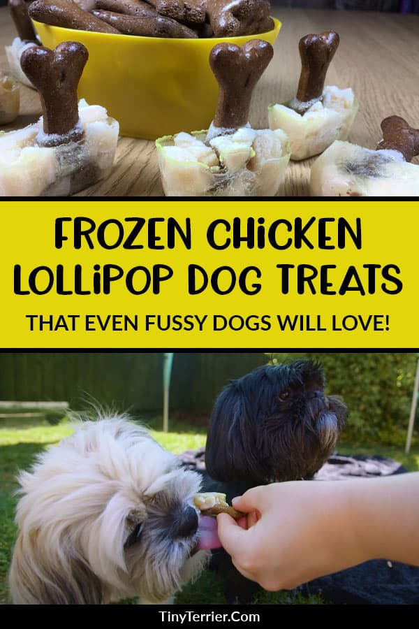 Tempt fussy eaters into enjoying their homemade frozen dog treats with these tasty and meaty chicken lollipop frozen dog treats. Using cooked meat and chicken stock is a great way to tempt those who would normally turn their nose up at homemade treats. These lollipops for dogs are a great summer time treat to help keep them cool on those long sunny days. #dogtreats #chicken #frostypaws #frozendogtreat #dogs #dogfood