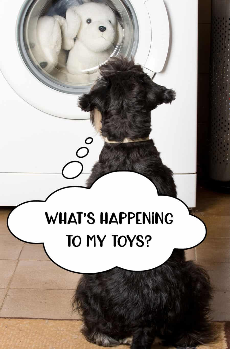 Dog sat watching his toys in the washing machine