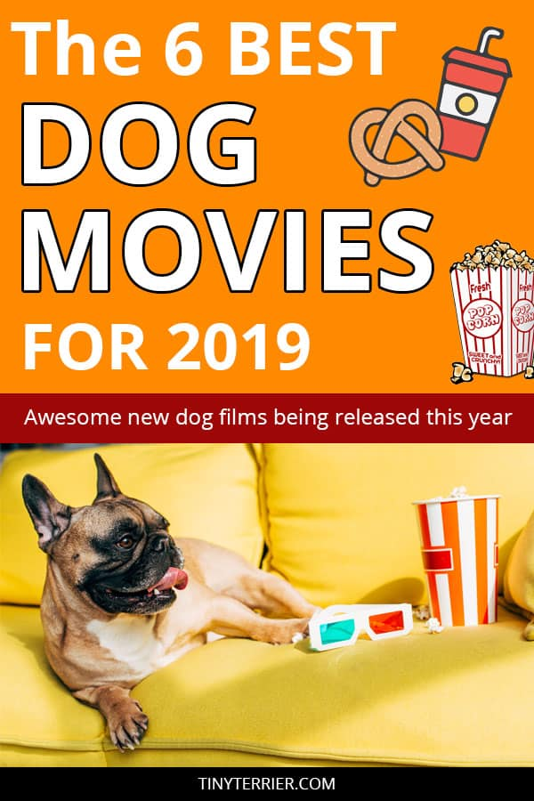 6 Heart-warming New Dog Movies to Watch in 2019