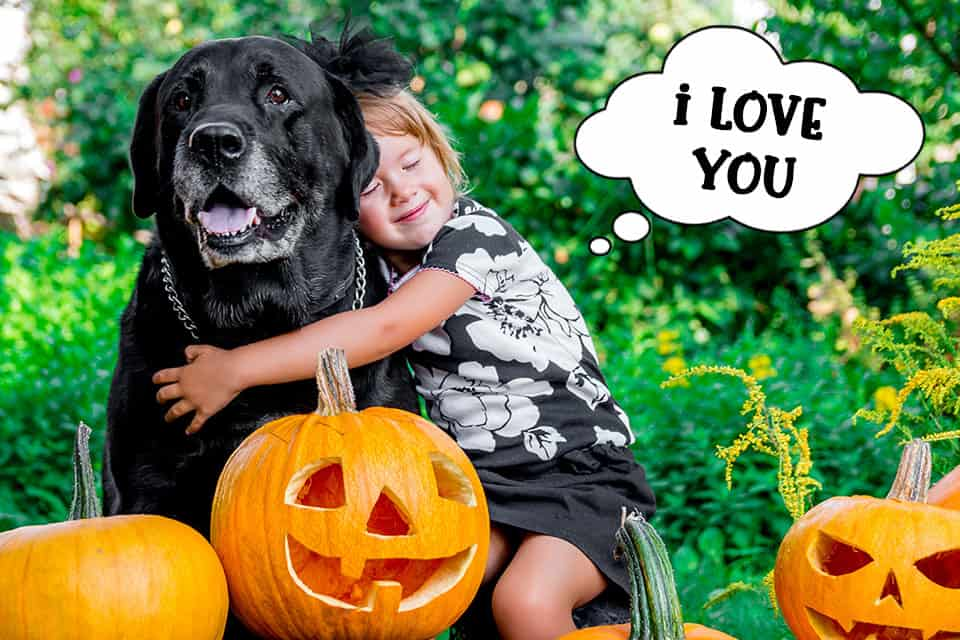 Child hugging dog at Halloween