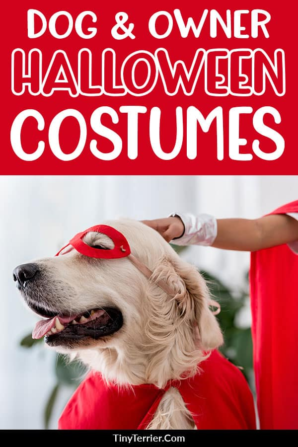 Dog and owner Halloween costumes. Discover the best dog & owner costumes for Halloween in 2019 and beyond. Matching dog Halloween costumes are adorable - don't miss out! #halloween
