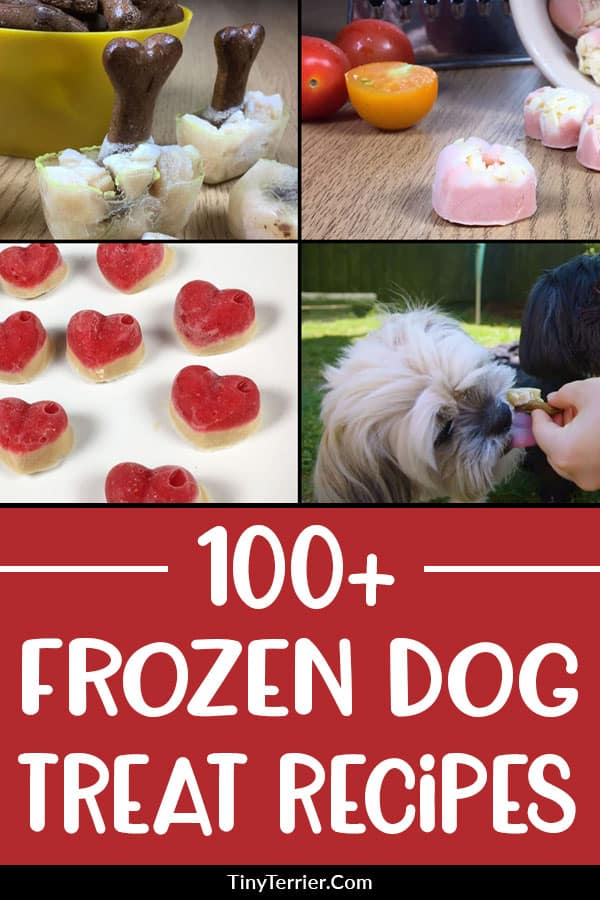 Is your dog feeling the heat this summer? If so, cool them down with some homemade frozen dog treats. Find over 100 frozen dog treat recipes here, with a HUGE range of ingredients. #dogtreats