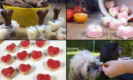 100+ Frozen Dog Treats for Summer [Free Recipes!]